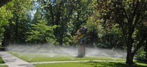 Pro spray