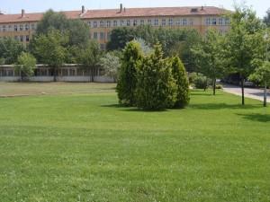 Юли 2007